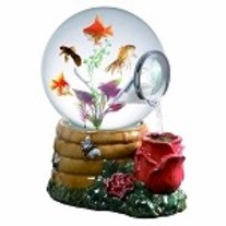 Honey_20rose_20magic_20globe_20fish_20aquarium_medium
