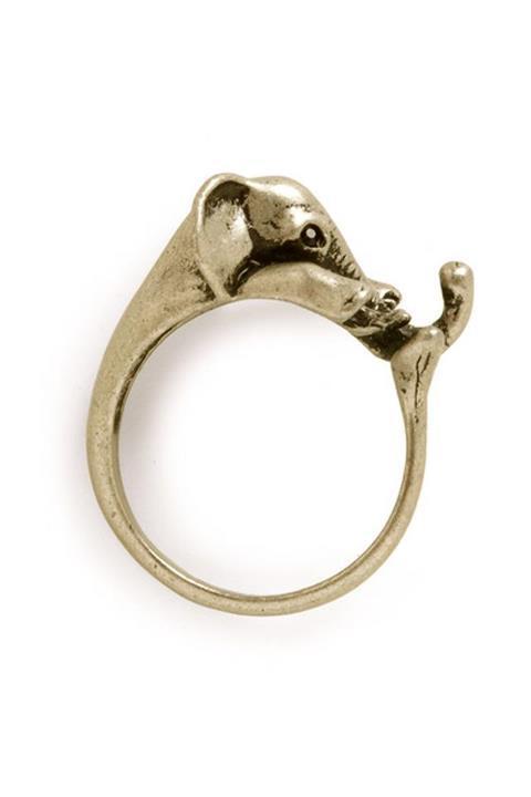 Elephant ring - photo#18