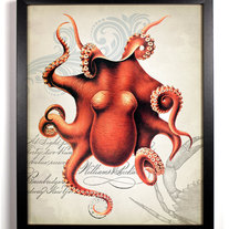 Image of Red Octopus Ephemera Antique Illustration 8 x 10