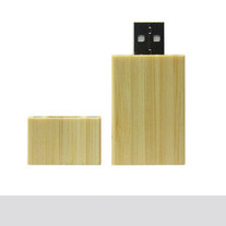 Wood_iphone_case_bamboo_usb_main_medium