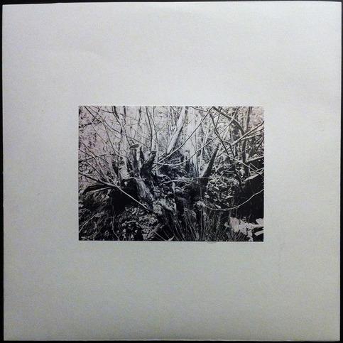 TQA033 - thisquietarmy - Rebirths LP (Deluxe Version ...