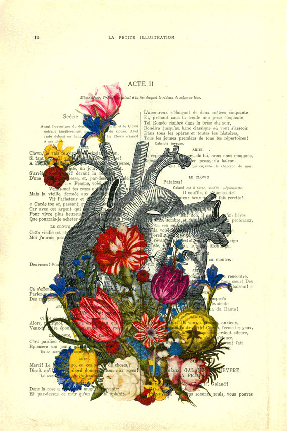 anatomical heart with flowers, floral heart on antique book page ...