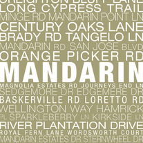 Mandarin Neighborhood Print