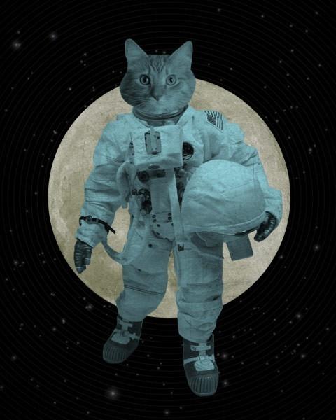 LuciusArt | Astronaut Space Cat - Wood Block Art Print ...