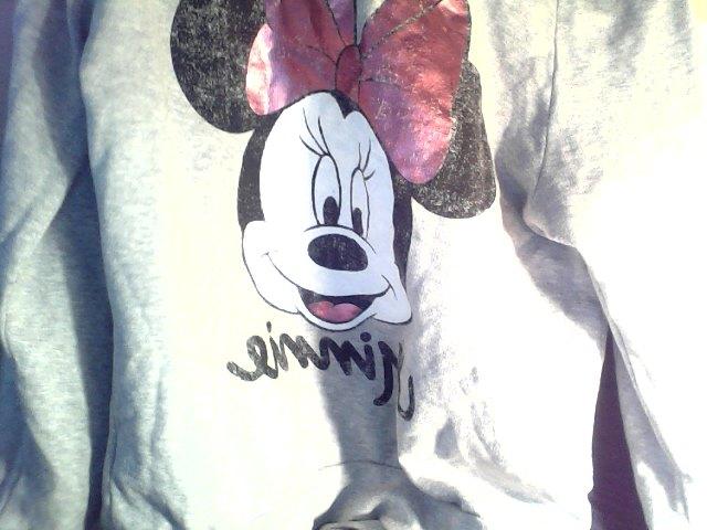 Minnie Mouse Sweatshirt H&m