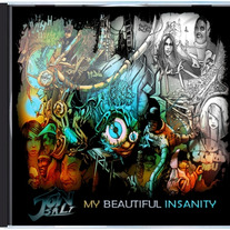 "Jon Salt ""My Beautiful Insanity"" Album (CD)"