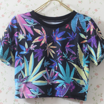 High Times Crop Top