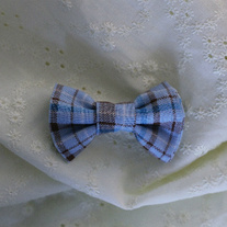 Plaid_medium