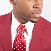 Official Grand Polemarch Tie