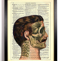 Image of Mustache Man Skull X-Ray, Vintage Dictionary Print, 8 x 10