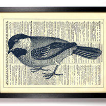 Image of Little Blueberry Bird, Vintage Dictionary Print, 8 x 10