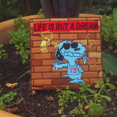 Life is but a dream patch
