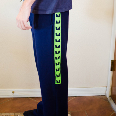 R/seahawks sweatpants