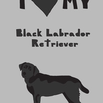 Black Labrador Retriever, 5x7 print