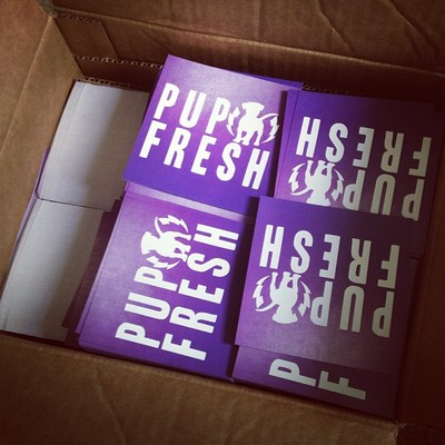 Pup fresh logo stickers (3 pack)