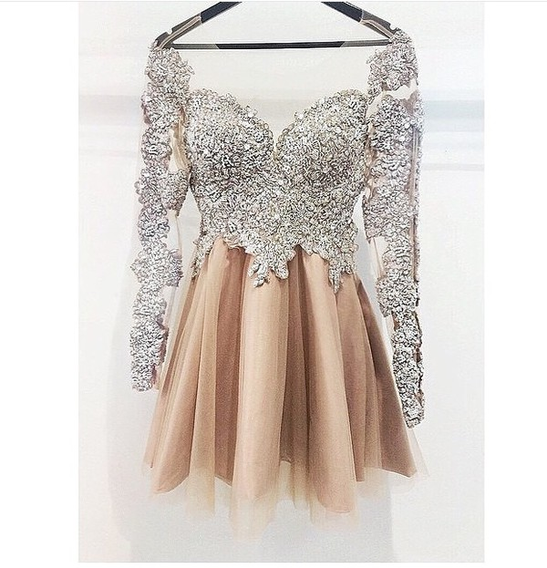 Long Sleeves Silver Champagne Cute Homecoming Dress,Vintage Short ...