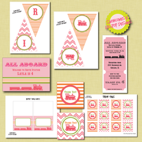 Full Collection - Pink All Aboard Printables
