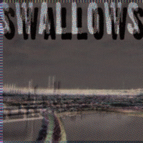 Swallows_20album_20art_medium