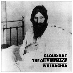 Cloud-rat-oily-menace-wolbachia_original