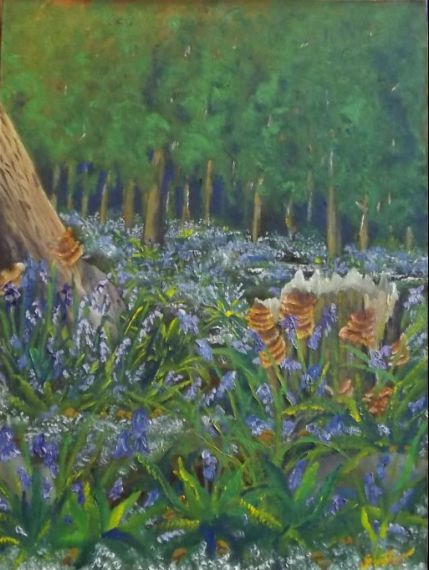 Blue_bells_in_the_woods_1_original
