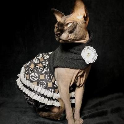 Diva dress- all hallows' eve