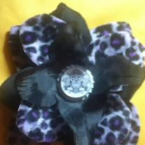 Black Cheetah Rose