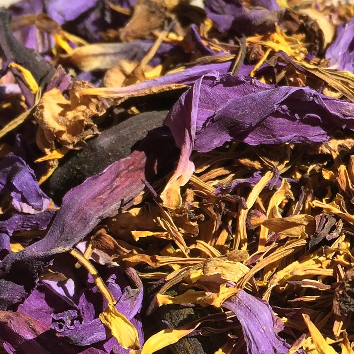Blue Lotus Flowers Nymphaea Caerulea Organic Sri Lanka On Storenvy