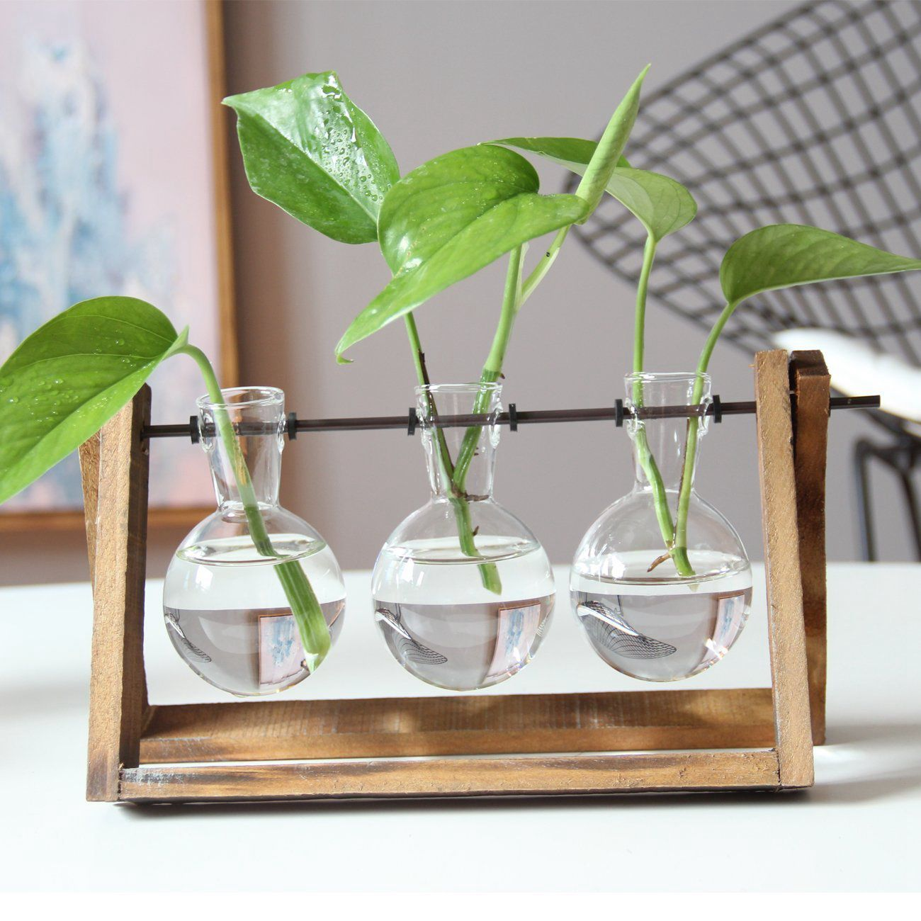 Modern Plant Terrarium On Wood Stand Sold By Maiamour On Storenvy